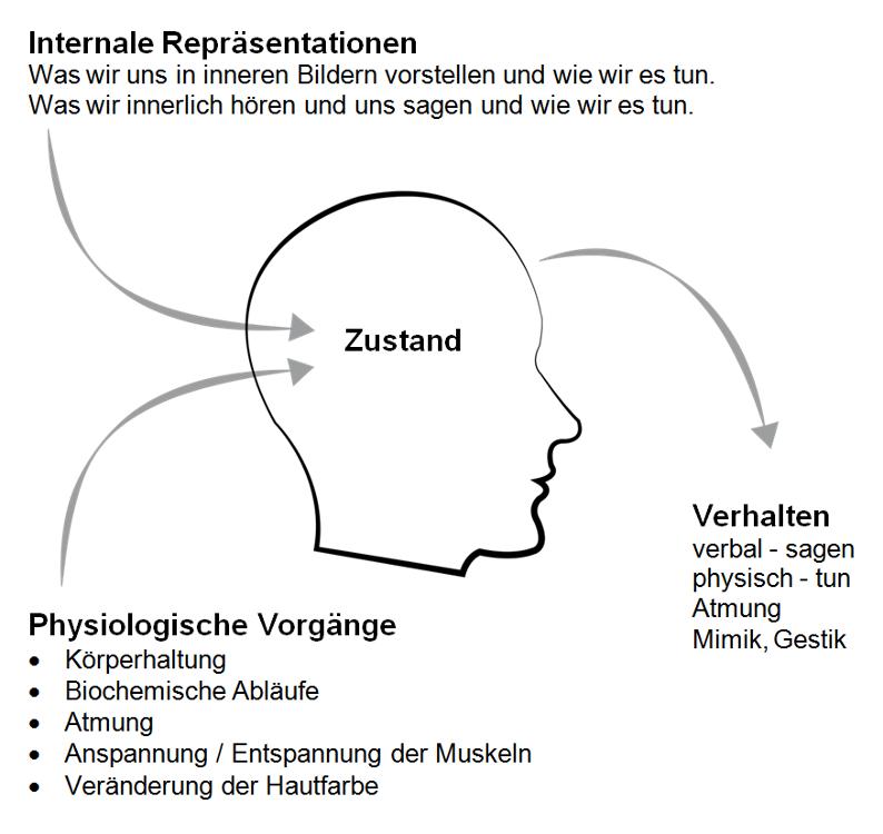 Internale Repräsentation