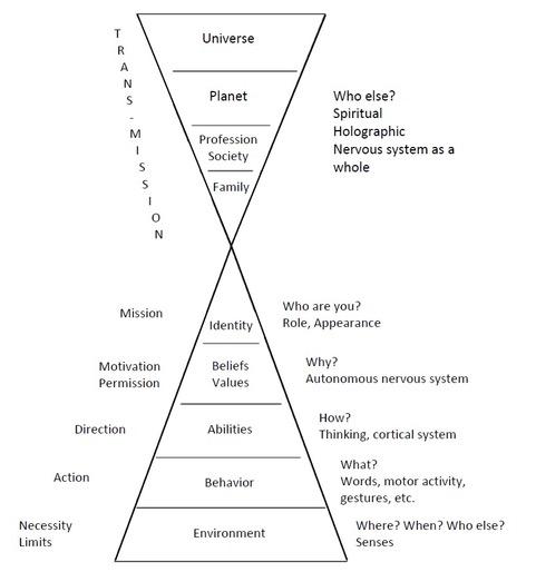 Neurological Levels