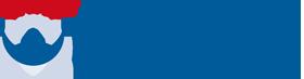 NLP Premium Logo